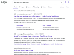 lawn care ppc ad example